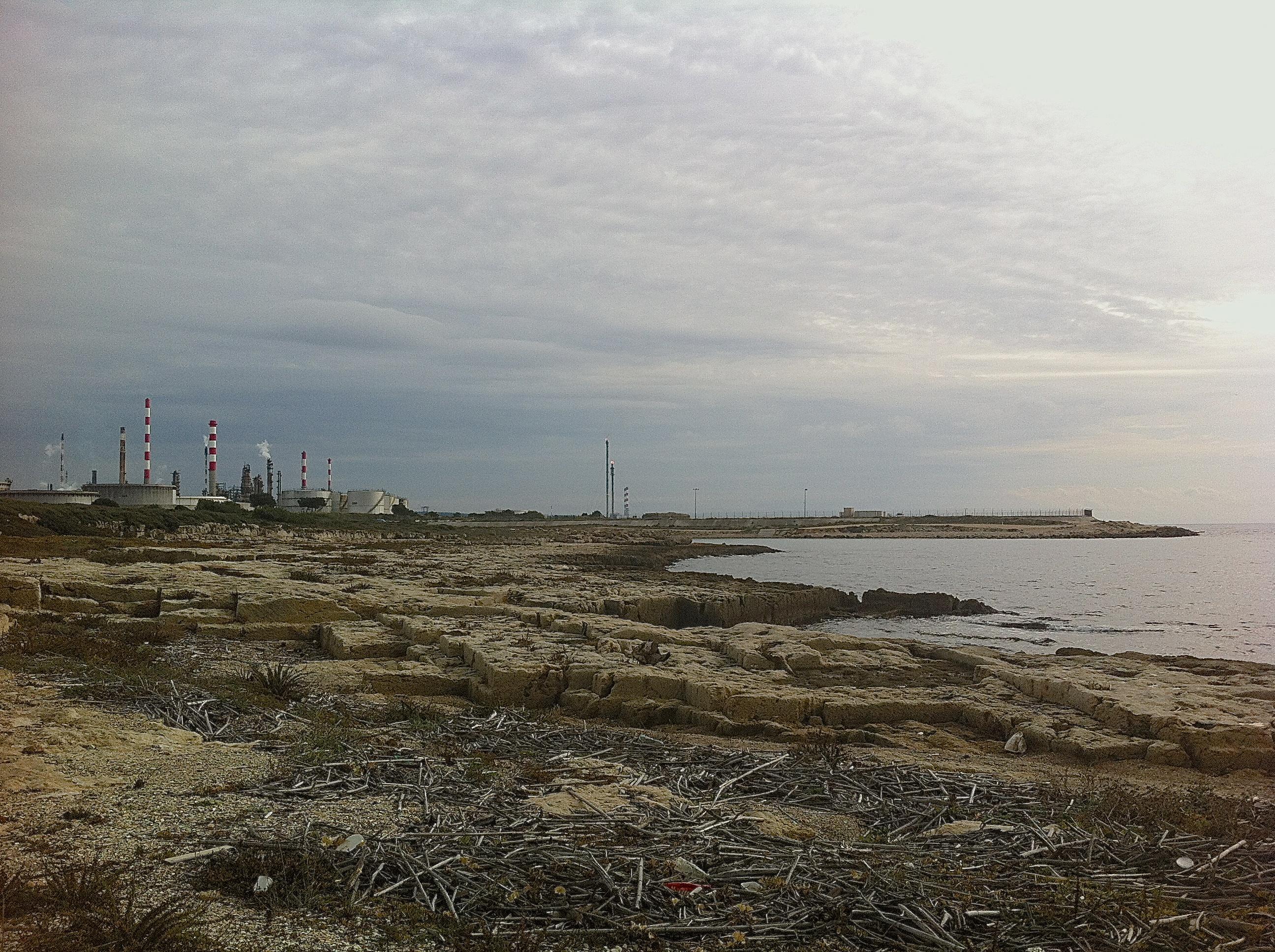 Socle de roche dans lequel les vents se taillent des trônes et les marées échouent des tapis où se dessinent les combats des roseaux contre le plastique.