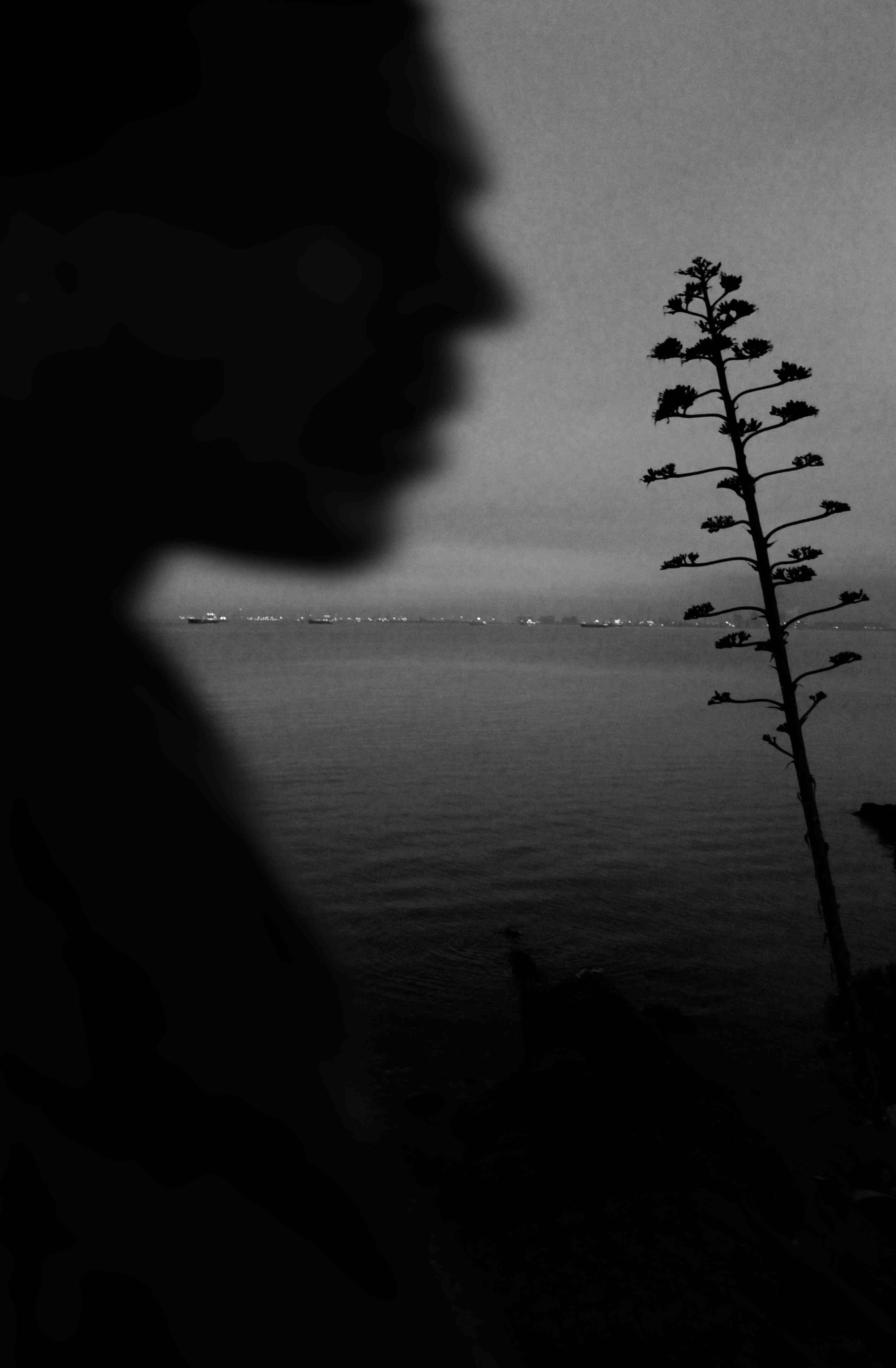 © Nicole Chayne Salini